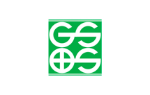 Gs and s logo